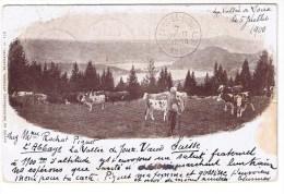 Vaud Vallée Joux 5 Juillet 1900 Carte Rare Bon état Good Condition  Timbre Suisse Swiss Stamp Cachet Abbaye Vaches - VD Vaud