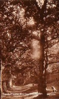 Ref V. Postcard. Shirley, Conduit Lane Shirley Nr Croydon. - Surrey