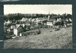 FREYR: L'Eglise Et Le Chateau, Niet Gelopen Postkaart  (GA13779) - België
