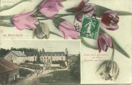 MALROY - Avec Mon Bon Souvenir, Je Vous Envoie Ces Fleurs (fantaisie)            -- EC - Frankreich