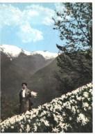 Lillianes (Aosta) - Aosta