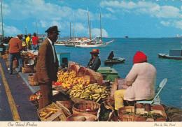 Iles Out,bahamas,commonwealt,n Ord De La Mer Des Caraibes,out Island Produce,bananas,sweet Potatoes,limes,onions,pea S - Postcards
