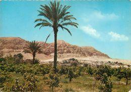 Mount Of Temptation, Jericho, Jordan Postcard Used Posted To UK 1966 Nice Stamp - Jordan