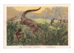 Chromo, Les Grandes Chasses, CROCODILE - Chromos