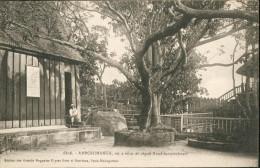 Ambohimanga, Où A Vécu Et Régné Randriamponimasi - Madagaskar