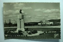 D 62 - Camiers - Statue De Calmette à L'entrée Du Sanatorium - Non Classés