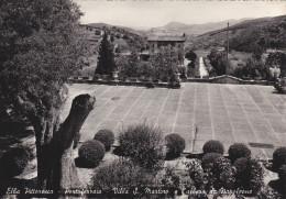 Toscana,elbe,elba,PORTOFE RRAIO,vi Lla  S Martino E L´albero Di Napoleone,avec Tampon Rare,ed Tognoli,magit - Livorno