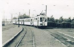 FOTOCOPIE         TRAM HALLE TE LEERBEEK STATION 6/07/1956 - Halle