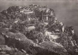 1960 CIRCA MONACO LE ROCHER ET LES JARDINS EXOTIQUES - Monaco
