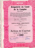 BRIQUETERIE DU CANAL DE LA CAMPINE-SOCIETE´ ANONYME-ACTION DE CAPITAL DE 500 FRANCS-20-12-1949-RIJKEVO RSEL-BELGIQUE - A - C