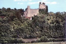 [03] Allier> Non Classés Monetay Sur Allier Ruines Du Château - Non Classés