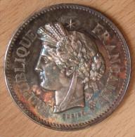 Médaille En Argent SOCIÉTÉ SERINOPHILE  1896 2éme Prix - Professionnels / De Société