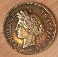 Médaille En Argent SOCIÉTÉ SERINOPHILE  1897 Prix D'honneur - Professionnels / De Société