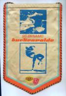 """W130 / SPORT CLUB """" DYNAMO """"  Luckenwalde Wrestling Lutte Ringen Swimming  17.0 X 24 Cm. Wimpel Fanion Flag DDR GERMANY - Worstelen"""