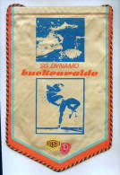 "W130 / SPORT CLUB "" DYNAMO ""  Luckenwalde Wrestling Lutte Ringen Swimming  17.0 X 24 Cm. Wimpel Fanion Flag DDR GERMANY - Other"