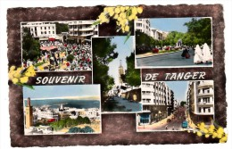 Maroc - Souvenir De Tanger - Editeur: La Cigogne N° 9932628 - Tanger