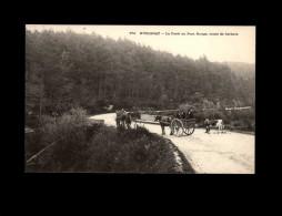 29 - HUELGOAT - Attelage Cheval - Vache - Huelgoat