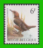 BUZIN - 2459** Cincle Plongeur / Waterspreeuw - FLUO - 1985-.. Birds (Buzin)