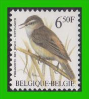 BUZIN - 2577** Phragmite Des Joncs / Rietzanger - FLUOR - 1985-.. Birds (Buzin)