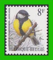 BUZIN - 2460** Mésange Charbonnière / Koolmees - FLUOR - 1985-.. Birds (Buzin)