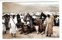 Maroc Pittoresque - Jour De Moussem - Editeur: Jeff N° 828 - Morocco