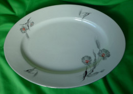 Vintage Altrohlau Porcelain Factory 1918 - 1939 MZ Czechoslovakia Oval Serving Plate 1003 5 43 - Ceramics & Pottery