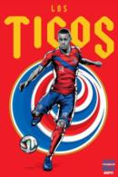 STICKER SIZE.6,5X9,5 CM. APROX - WORLD CUP FOOTBALL BRASIL 2014 - COSTA RICA - Otros
