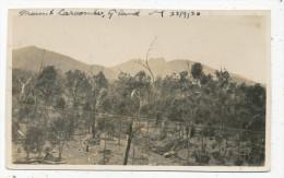 Mount Larcombe, Queensland, 22/9/20 - Other