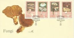 Ciskei 1987 Fungi FDC - Ciskei