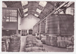 16 COGNAC, Etablissements Hennessy, Une Des Batteries De Foudres, Carte Dentelée, Glacée, Gd Format - Cognac