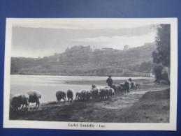 AK CASTEL GANDOLFO Lago Ca.1920  ///  D*12649 - Other Cities