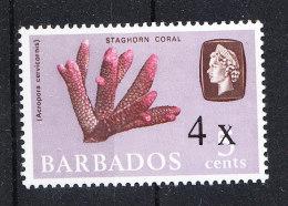 Barbados   -   1970. Corallo.  Coral - Marine Life