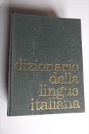 Lib281 Dizionario Lingua Italiana, Edizione Fabbri Marzullo 1965 Con Schede Illustrate - Dizionari