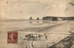 HENDAYE  LA PLAGE DES DEUX  JUMEAUX - Hendaye