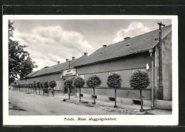 CPA Pelsöc, Blum Ideggyogyintezet, Vue De La Rue - Slovaquie
