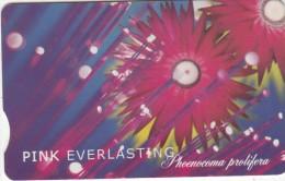 SOUTH AFRICA(chip) - Flowers/Pink Everlasting, Telkom Telecard R100, Tirage 20000, Exp.date 04/01, Used - Sudafrica