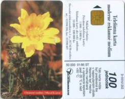 Telefonkarte Slowakei - Blume,flower  -  Aufl. 50000 - 01/96 - Slowakei