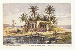 Cp, Egypte, Près De Suez, Les Sources De La Moïse - Suez