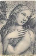 Siena - Accademia Di Belle Arti - Testa Di Eva - Sodoma - Siena
