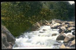 Cpa  Jamaica Wag Water River Near Castleton Gardens  ...  Jamaique     MAI13 - Jamaïque