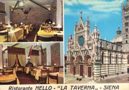 SIENA  , Ristorante Nello  , La Taverna , - Siena