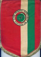 W162 / SPORT Championship  RAZGRAD 1976 Wrestling Lutte Ringen 21 X 29 Cm Wimpel Fanion Flag  Bulgaria Bulgarie - Ringen