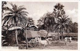 BENGAL Bangladesch Village Scene Ochsenkarren 1920? - Bangladesch