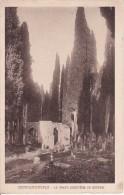 PC Constantinople - Le Grand Cimetière De Scutari (5186) - Türkei