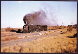 Post Card - Trains - Locomotive - Class 25 Condensor At Orange River - Trains