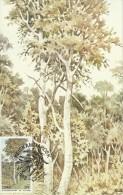 Ciskei 1983 Trees, Maximum Card - Ciskei