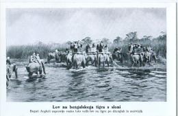 AK MISSIONEN SLOWENIEN BENGALSKA MISIJA Bengali MISSION JAGD Bengal-Tiger Auf Elefanten ALTE POSTKARTE - Missionen