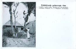 AK MISSIONEN SLOWENIEN BENGALSKA MISIJA Bengali MISSION INDIEN INDIA ERLANGEN Palmwein ALTE POSTKARTEN - Missionen