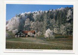 SWITZERLAND - AK 200147 Appenzell-Innerrhoden - Rauhreif Bei Schachen - AI Appenzell Inner-Rhodes
