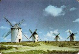 CALENDARIO DEL AÑO 1971 DE LA VENTA DE DON QUIJOTE (CALENDRIER-CALENDAR) MOLINO-MOULIN - Calendarios